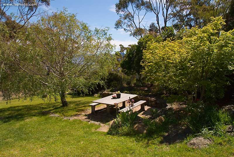 _LLG0596_cottage_garden
